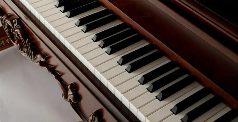 k8-2 钢琴键盘