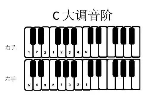 C 大调音阶