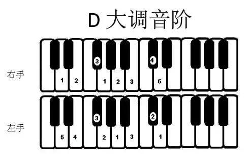 D 大调音阶