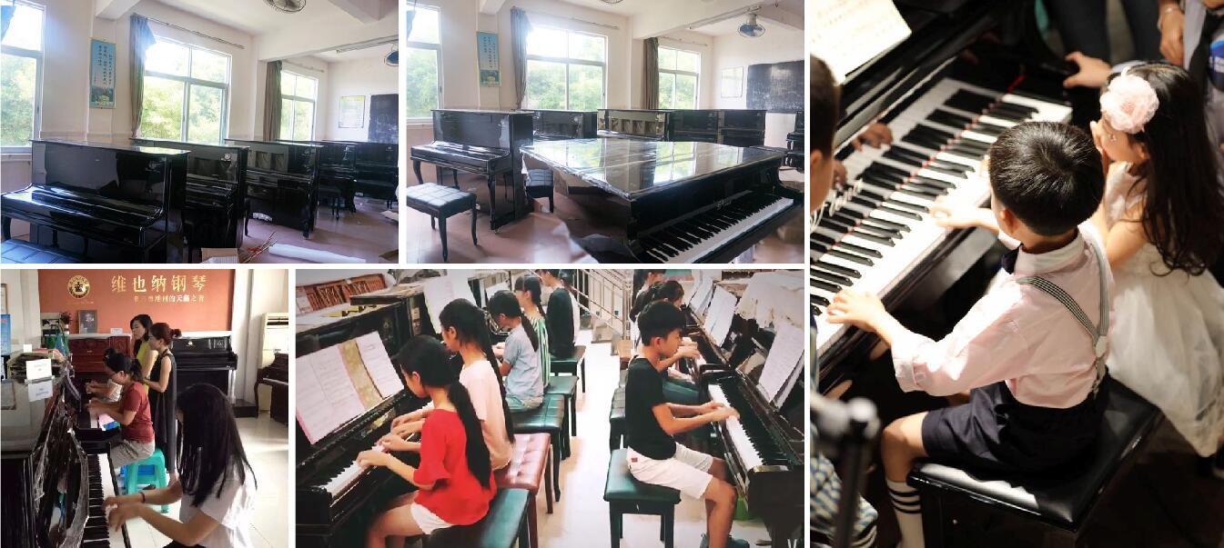 维也纳教育钢琴系列